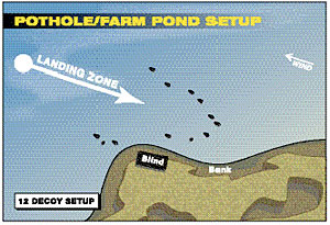 Duck Decoy Setup